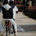 春は自転車