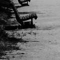 Photos: 淋しいベンチ