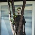 Photos: 秋は木立を抜けて