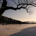 高松の池 (6)