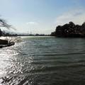 高松の池 (5)