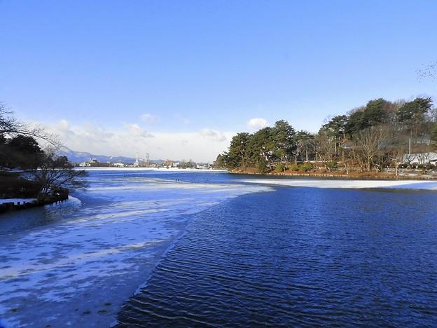 Photos: 高松の池 (2)