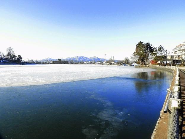 Photos: 高松の池 (4)