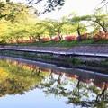 高松の池 (8)