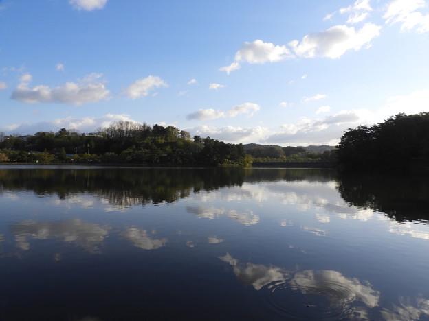 高松の池 (2)