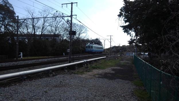 Izukyu No