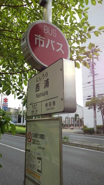 名古屋市バス停留所1