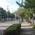 DSCN1360豊国神社参道