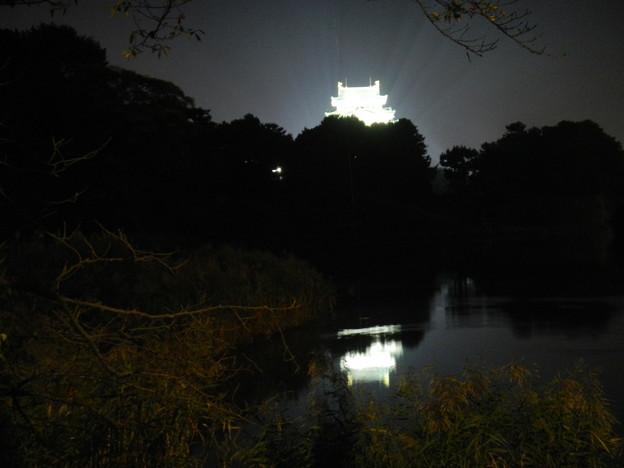 DSCN5895名古屋城天守閣夜景(斜め)