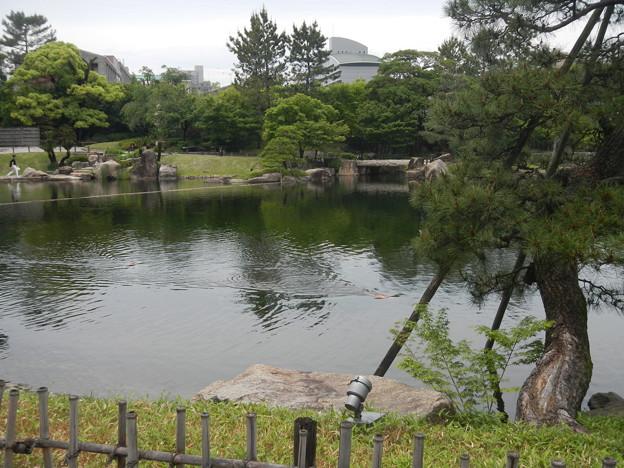 徳川園 (10)