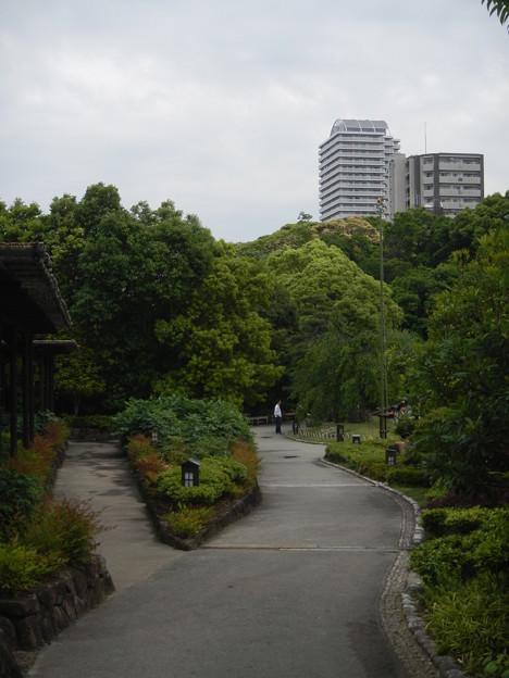 徳川園 (14)