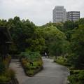 Photos: 徳川園 (14)