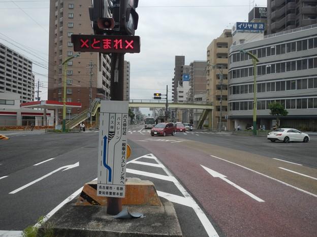 名古屋 基幹バス カラー舗装