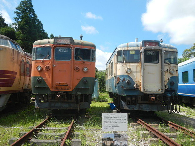 113s, representative 2 liveries