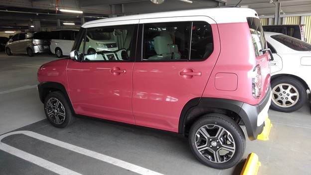 Suzuki Hastler (2018) cheerful pink