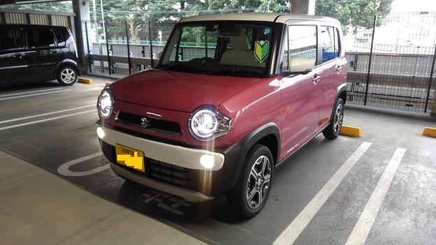 Suzuki Hastler (2018) Grade X, NA