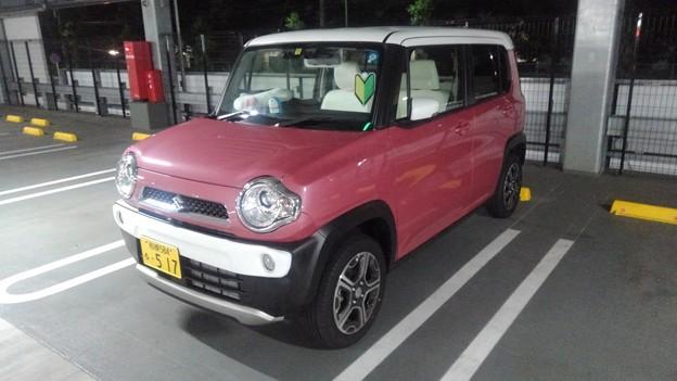 Suzuki Hastler (2018) white bumper