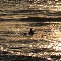 Photos: 夕陽輝く海で波を待つ