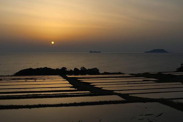Photos: 夜明けの棚田(1)