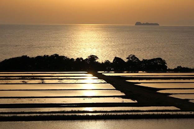 朝陽に輝く棚田(3)