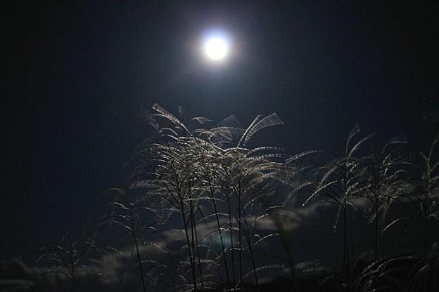 中秋の名月(3)