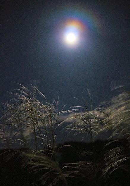 中秋の名月(5)