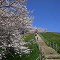 Photos: さきたま古墳公園 210331 07