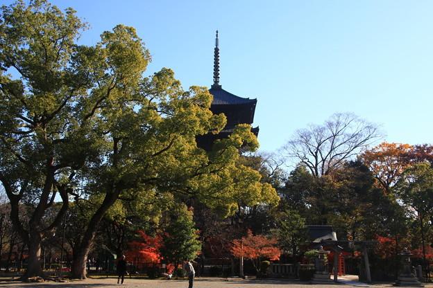 東寺 171202 08
