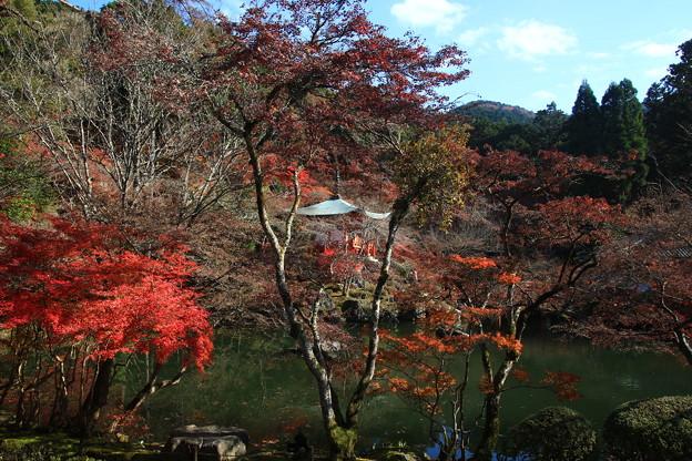 醍醐寺 171202 08