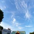 Photos: 空と巫女さん