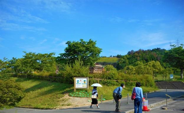 新緑の候@高原の青い空