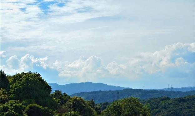 梅雨の晴れ間の雲の峰@瑠璃山