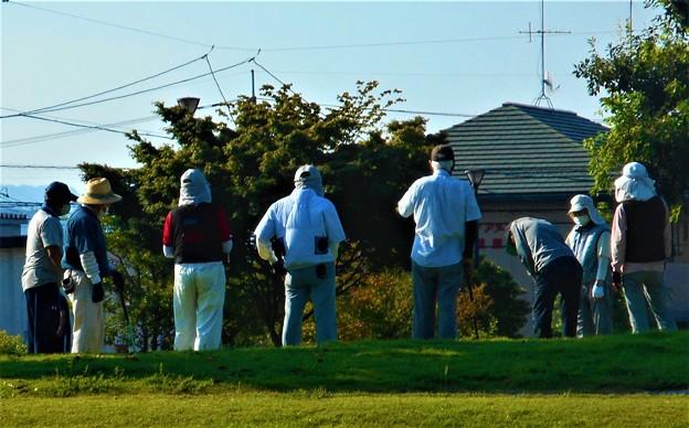 日課の早朝ゲートボールコンペ@夏の公園(2)