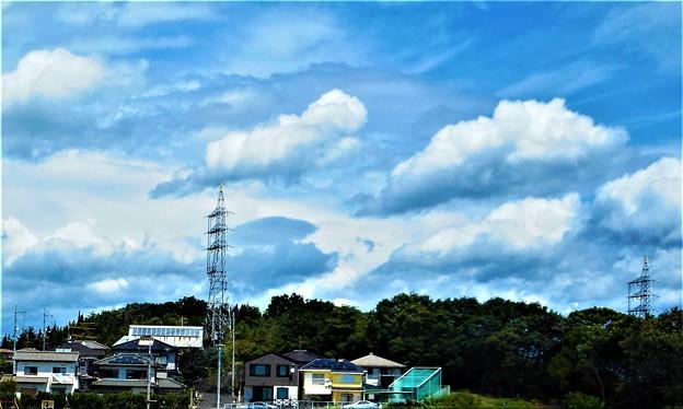 晩夏の久々の青い空と白い雲@瑠璃山山頂周辺@21.8.25