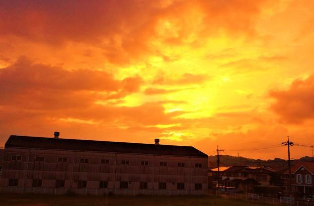 初秋の散歩道の夕暮れ@藤井川西岸の夕陽21.9.8