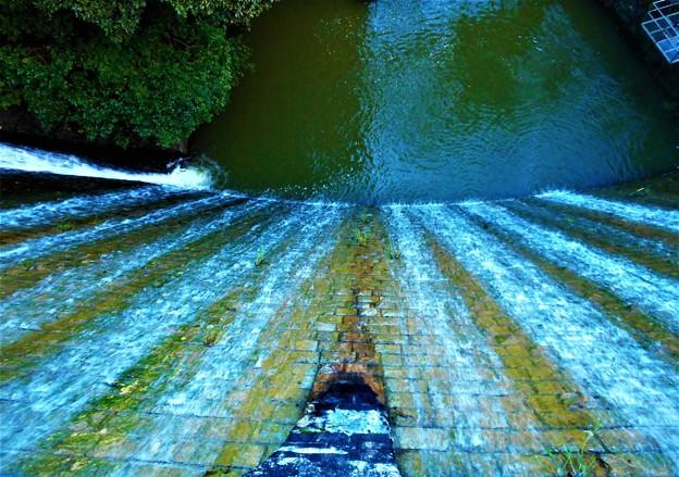 水源池の秋@久山田水源池周辺の散策(2)