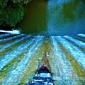 Photos: 水源池の秋@久山田水源池周辺の散策(2)