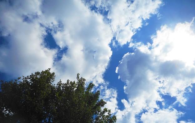 青い空&白い雲@秋の瀬戸内海21.10.14