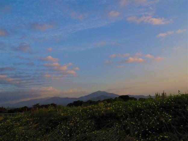 Photos: 静寂の朝