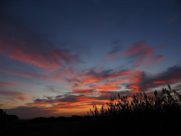 日の出前1