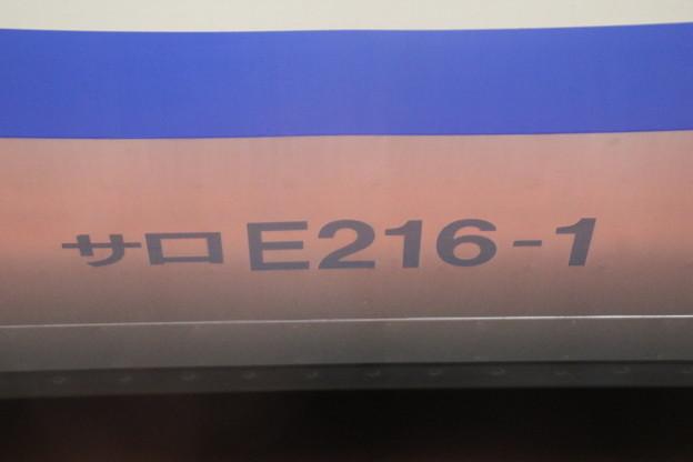 サロE216-1