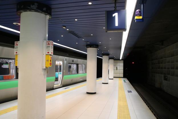 新千歳空港駅(AP15)