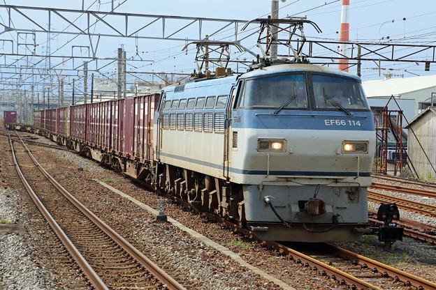 Photos: EF66ー114@吉原駅