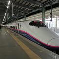 Photos: とき301号@新潟駅