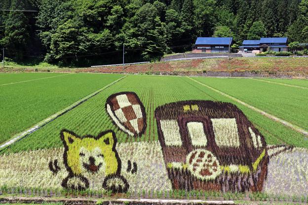 内陸線の車窓~田んぼアート1