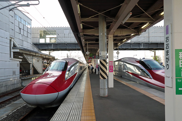 秋田新幹線@大曲駅