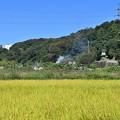 Photos: 里山風景 煙たなびく