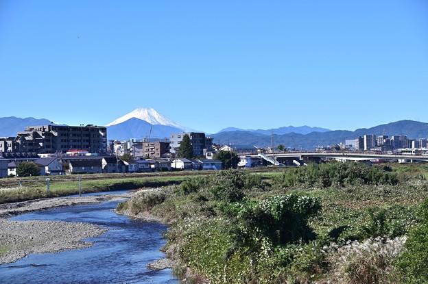 浅川からの富士山