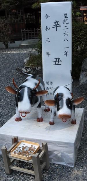 I小国神社干支「うし、丑」作者:鈴木格子(けいこ)さん