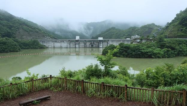 太田川ダム「かわせみ湖」いろどりみさきこうえん( 彩り岬公園)から